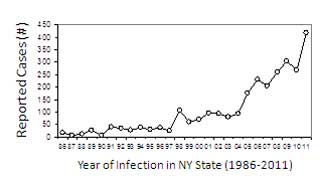 A map of Babesiosis infections in NY State.
