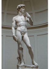 David by Michelangelo, a piece in the Neurology, Illustrated gallery at Tufts Medical Center in Boston, MA.