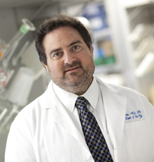 Errol Norwitz, MD, Chief of Obstetrics and Gynecology at Tufts Medical Center in Boston.
