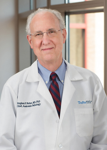 Stephen P. Naber, MD, PhD