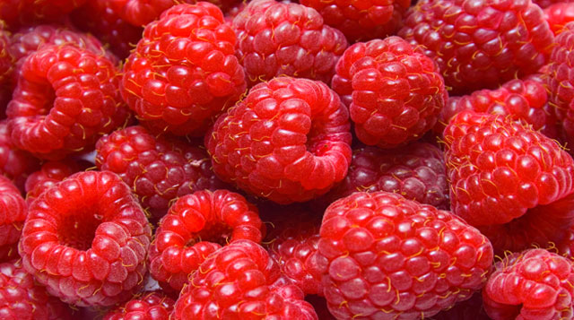 Berries for fiber