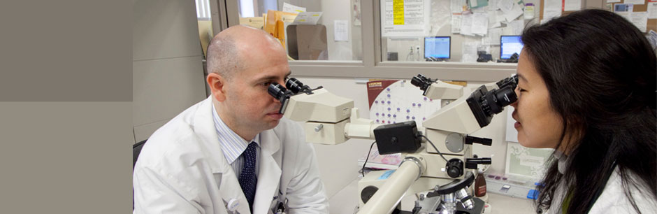 View All Our Services Two Researchers Looking Into Microscopes